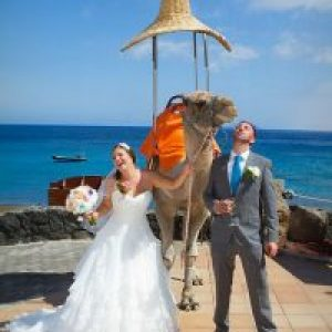 Rocks and Roses Wedding Planners Vicky and Chris Marea Terraza Lounge Bar Playa Blanca 2014